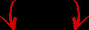 Seta - Site na Teia